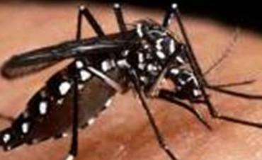 Confirmaron el segundo caso de dengue en Entre Ríos