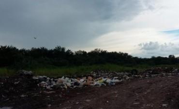 Plan de saneamiento del basural a cielo abierto