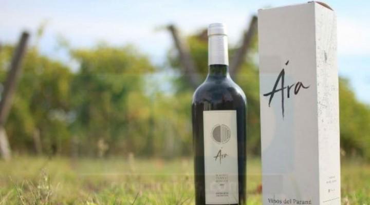 Apostaron al vino entrerriano y transformaron su campo sojero