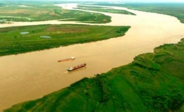 Buscan restaurar el bosque ribereño en los márgenes de ríos y arroyos del Delta