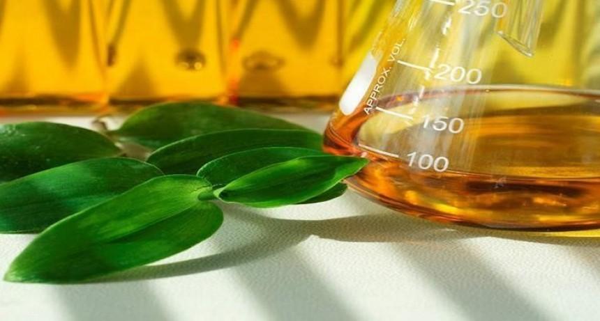 El Gobierno aumentó a 15% las retenciones al biodiésel