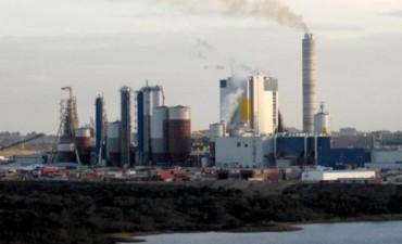 Uruguay gestiona instalar otra pastera: Se reunirán con ejecutivos de UPM