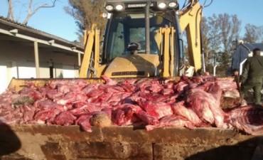 Gendarmería secuestró cuatro toneladas de animales faenados