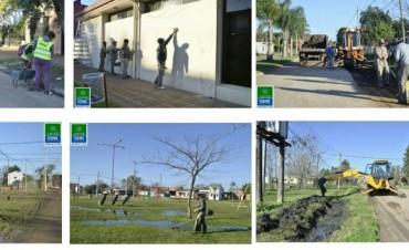 Se realizan tareas de mantenimiento en distintas partes de la ciudad
