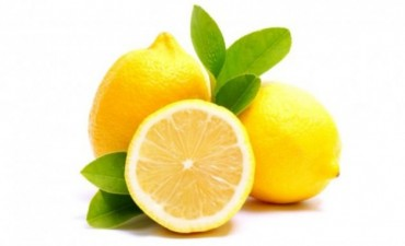 ¿Sabías que el limón puede hacer mucho por tu belleza? ¡Enterate!