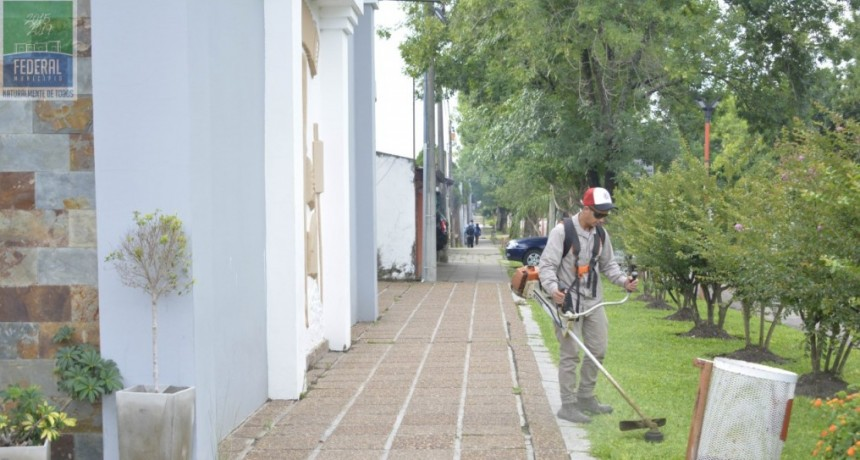 EL ÁREA DE SERVICIOS PÚBLICOS REALIZA TAREAS DE MANTENIMIENTO DE ESPACIOS PÚBLICOS