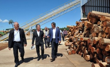 Se inauguró en Entre Ríos una fábrica que produce energía alternativa a partir de desechos de madera