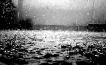 Datos de lluvia caída en el departamento