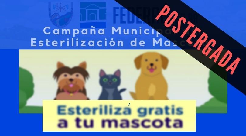 POSTERGADA CAMPAÑA MUNICIPAL DE ESTERILIZACIÓN