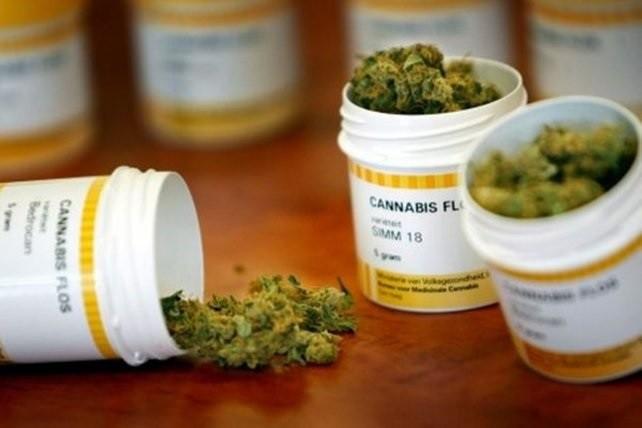 Proponen que Entre Ríos adhiera a la Ley de cannabis medicinal