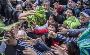 Regalan 20.000 kilos de verduras en Plaza de Mayo: Piden ley de emergencia