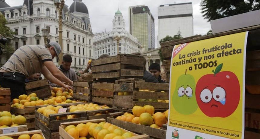 Regalaron 20 toneladas de fruta en Plaza de Mayo y hubo varias cuadras de cola