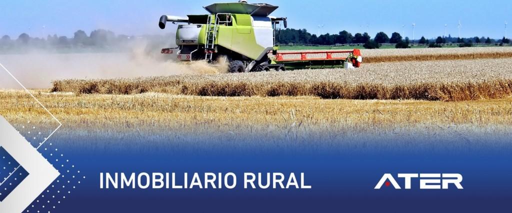 Comienza el vencimiento del pago anual o primer anticipo del impuesto inmobiliario rural 2021