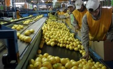 Tras 8 años reabren el mercado brasileño para cítricos argentinos