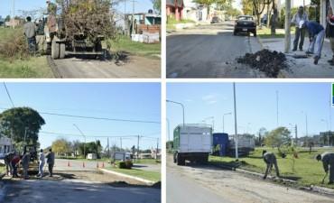 Se realizan distintas tareas de limpieza y mantenimiento en distintas partes de la ciudad.
