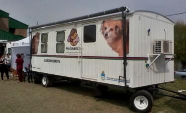 El Quirofano Móvil para mascotas llega a Federal