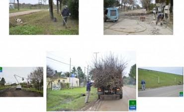 Tareas de mantenimiento en distintas partes de la ciudad
