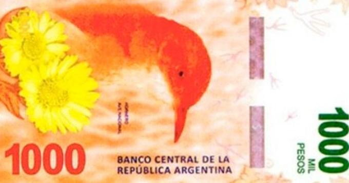 Se viene el billete de 1000 pesos con la figura del hornero