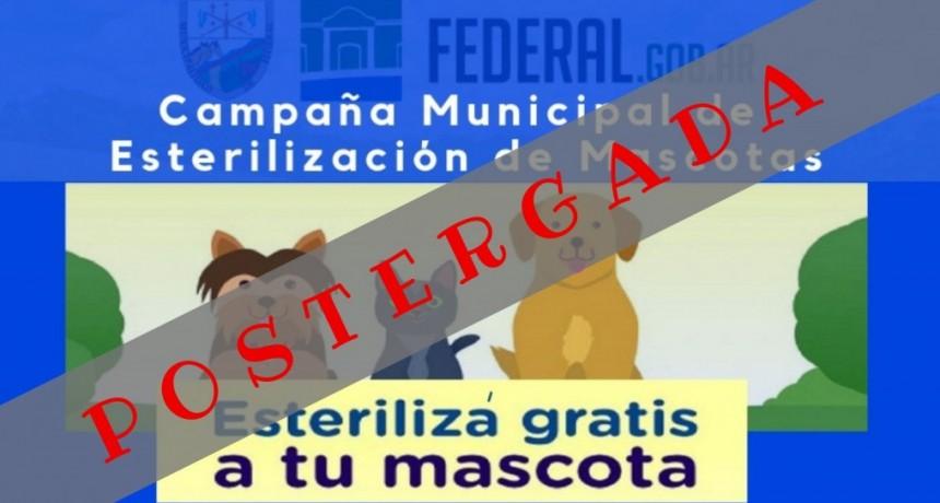 CAMPAÑA MUNICIPAL DE CASTRACIÓN DE MASCOTAS POSTERGADA