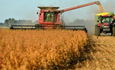 Otra marcha atrás y van? Gobierno no cumplirá, por ahora, con promesa de bajar 5% a retenciones a la soja