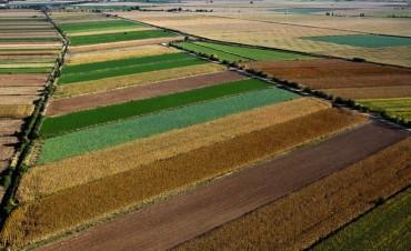 La AFIP creó el Registro Fiscal de Tierras Rurales Explotadas