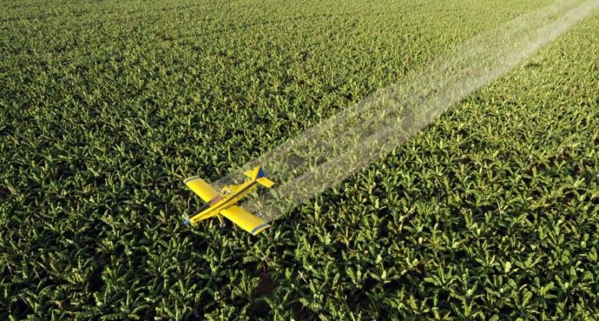 La municipalidad de General Pueyrredón deberá limitar las áreas fumigables   Un fallo de la Corte bonaerense a favor de la agroecología