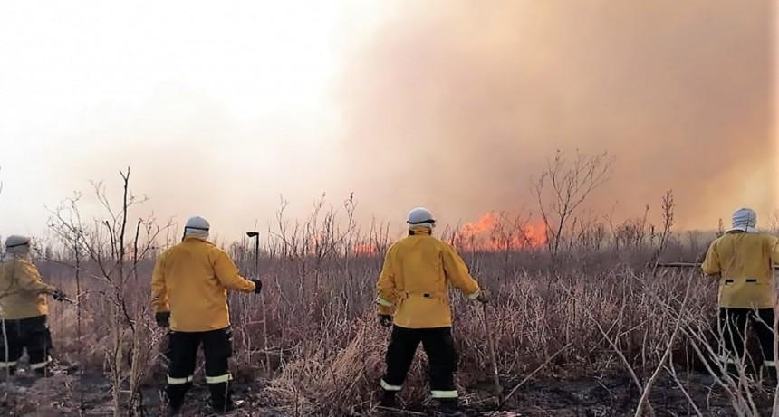 Brigadistas entrerrianos combaten incendios cercanos a viviendas rurales en el Delta