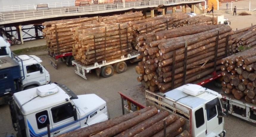 Crecieron las exportaciones entrerrianas durante el primer cuatrimestre de 2020