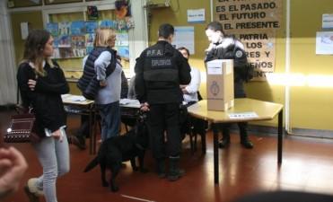El Correo Argentino explicó por qué faltaron boletas en algunas escuelas
