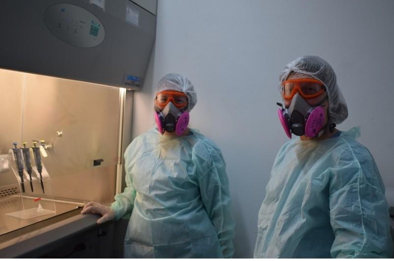 Científicos de la UNLP hicieron un descubrimiento clave del coronavirus