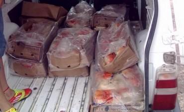 Decomisan pollos faenados sin cadena de frió y habilitación del vehículo