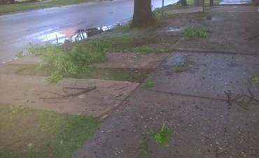 Fuerte temporal de viento lluvia y granizo en la madrugada del domingo en Federal
