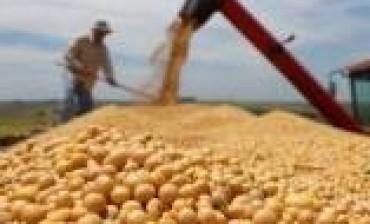 Por la rebaja de retenciones a la soja, el Estado se perderá de recaudar 1039 millones de dólares