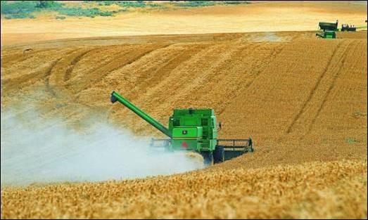 Cuales son los ejes de la ley de fomento al desarrollo agroindustrial