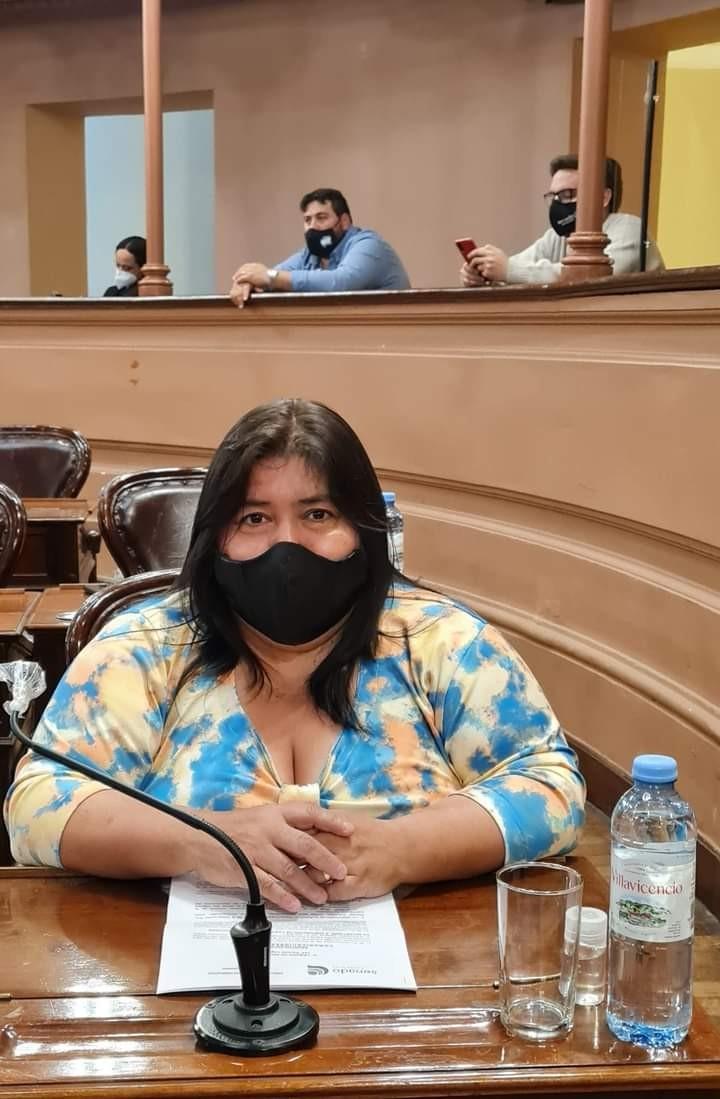 El Senado aprobó por unanimidad, la Ley de Enfermería y el Régimen de Protección, Asistencia y Prevención de la Violencia de Género