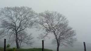Tras el vendaval, el tiempo mejora y no prevén lluvias por varios días