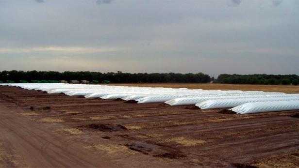 Estiman que el campo tiene granos retenidos por 13 millones de dólares