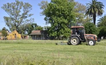 Tareas de prevención: Se intensifican las tareas de corte de pasto