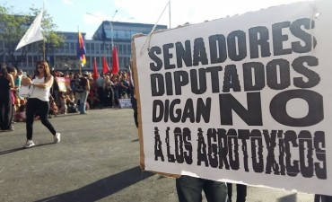 """Una multitud se concentró frente a la Casa de Gobierno para exigir """"basta de agrotóxicos"""""""