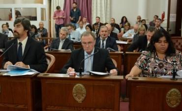 Senadores justicialistas rechazan modificaciones en la Ley de Salud Mental