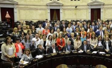 Las diputadas se unieron más allá de los bloques y lograron la Ley de Paridad