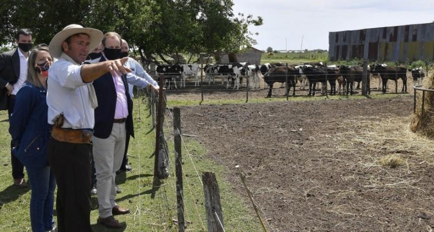 La provincia invertirá casi 50 millones de pesos para mejorar la competitividad de la cadena láctea