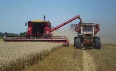 El sector agropecuario podría generar 500 mil puestos de trabajo entre 2015 y 2019
