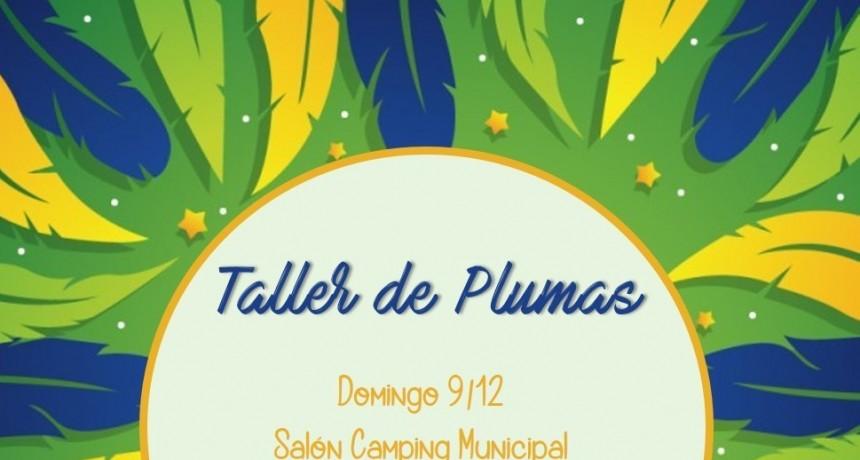 TALLER DE PLUMAS ARTIFICIALES PARA COMPARSAS
